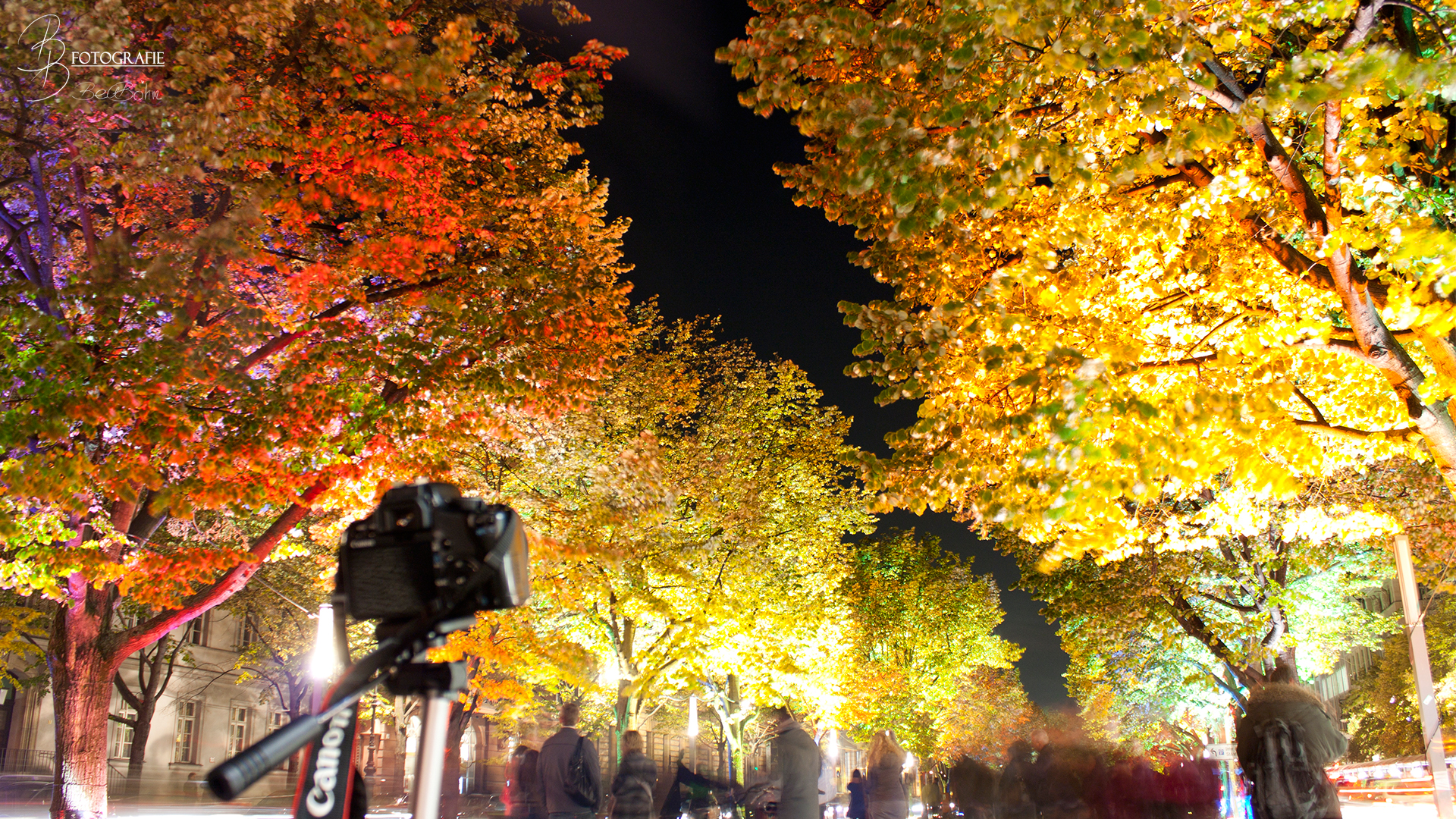 18 Berlin Unter den Linden zum Festival of Lights