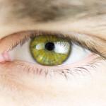 12 Jean Claude Castor - Das Auge